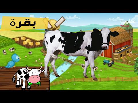 اصوات و اسماء حيوانات المزرعة   اصوات الحيوانات لـ أطفال الروضة والمدرسة Farm Animals