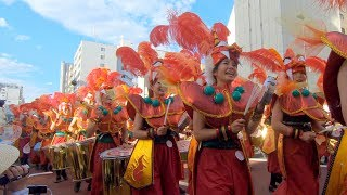 G.R.E.S. União dos Amadores at Asakusa Samba Carnival 2018 青空を多...