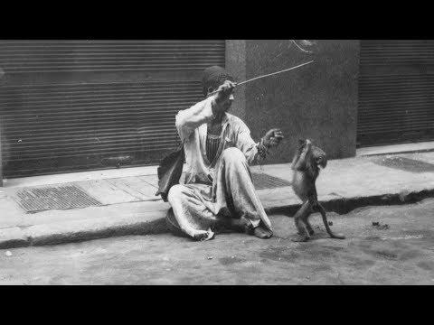 Duniya mein rehana hai toh kaam kar pyare - Anand Bakshi & a Monkey