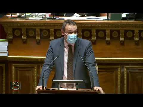 Pierre-Jean VERZELEN : Proposition de résolution sur l'aménagement numérique des territoires