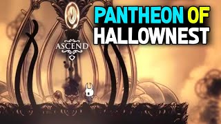 Attempting To Beat The Pantheon Of Hallownest and 30K sub Hype!