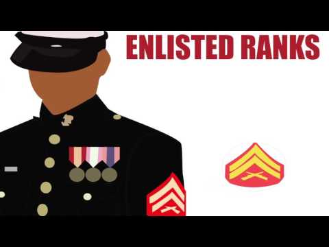 Brief History of the Marine Corps