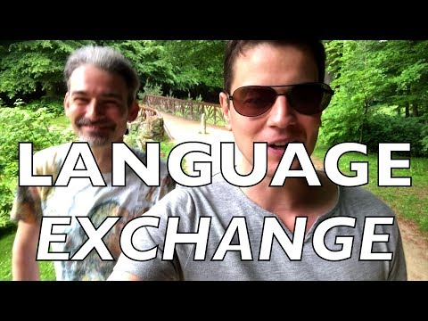 Do Language Exchanges Work?