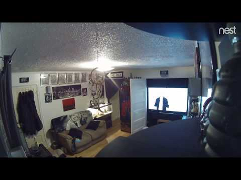 Marisa robs my house in Billings MT while I'm sleeping (which is under the camera on my shelf)