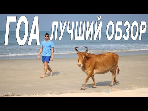 ГОА, ИНДИЯ.Честный обзор.Пляжи Северного Гоа. Цены, советы, отзыв. Хитрый Турист Vs Орел и Решка Гоа