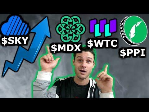 Walton: Masternodes to Mining | Mandala vs. Binance | Pied Piper Coin? | Skycoin Skywire!
