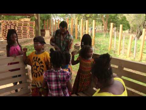 [ƆFA 1] Abibifahodie Adesuabea - 14 Ogyefuo 2017