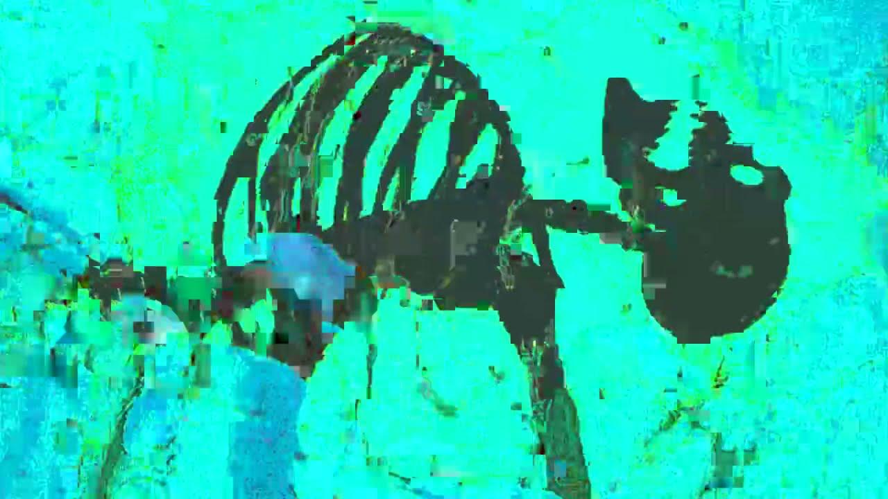 Trippie Redd x Playboi Carti - Miss The Rage [Extended + Reverse Intro] (slowed + 639Hz + reverb)