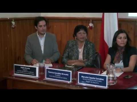 Consejo de Monumentos Nacionales Rescate Cerro Ballena Caldera