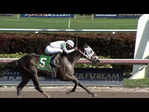 Gulfstream Park Replay Show | December 7, 2016
