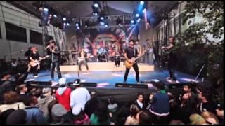 "Planta e Raiz - Pique natty dread "" DVD 15 anos Ao vivo"" Oficial"