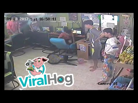 Feisty Snake Slithers into Internet Cafe - Extended Version