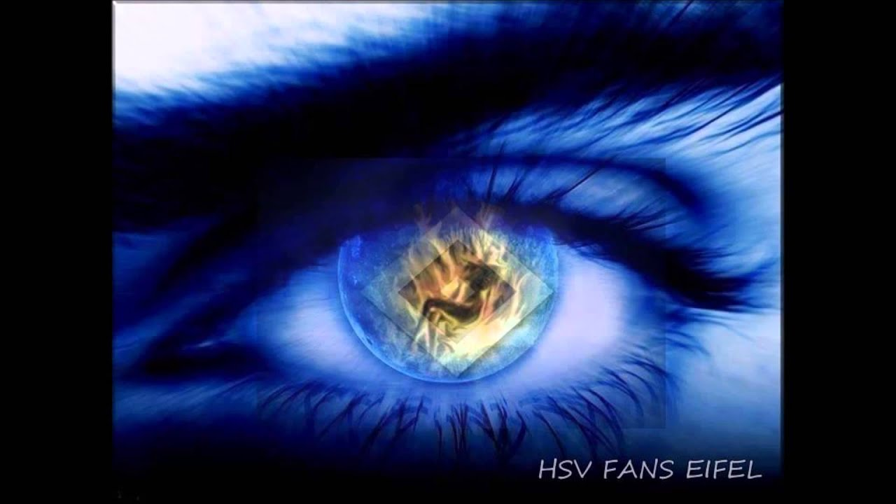 hsv 1 liga