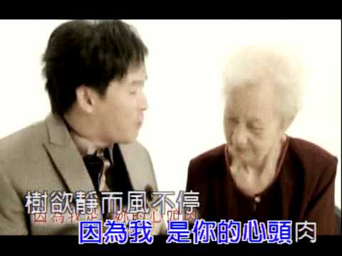 蔡義德-心頭肉[KTV].mpg
