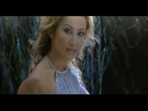 Coco Lee - A Love Before Time - OST Crouching Tiger Hidden Dragon (English and Mandarin MixMax)