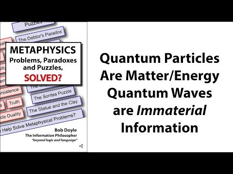 Quantum Particles are Matter or Energy. Quantum Waves are Immaterial Information