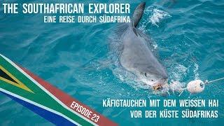 Eine Reise durch Südafrika - 23 - Käfigtauchen mit dem weissen Hai in Gansbaai