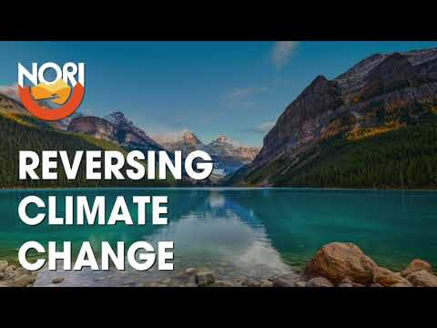 translating-climate-data-into-art-with-judy-twedt:-reversing-climate-change-#65
