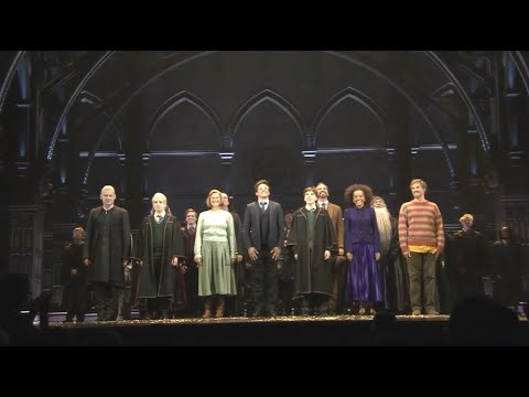 Download Harry Potter and the Cursed Child is back!