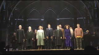 Harry Potter and the Cursed Child is back!