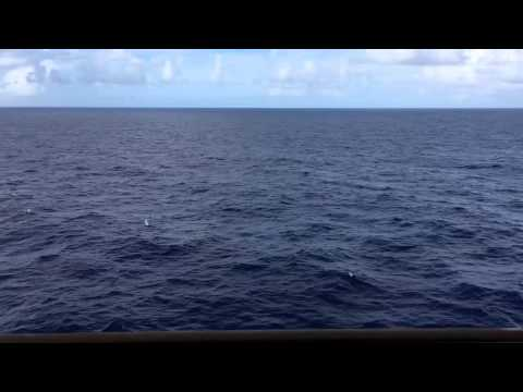 Ocean View - 1 Full Hour HD - Cruise Ship Balcony