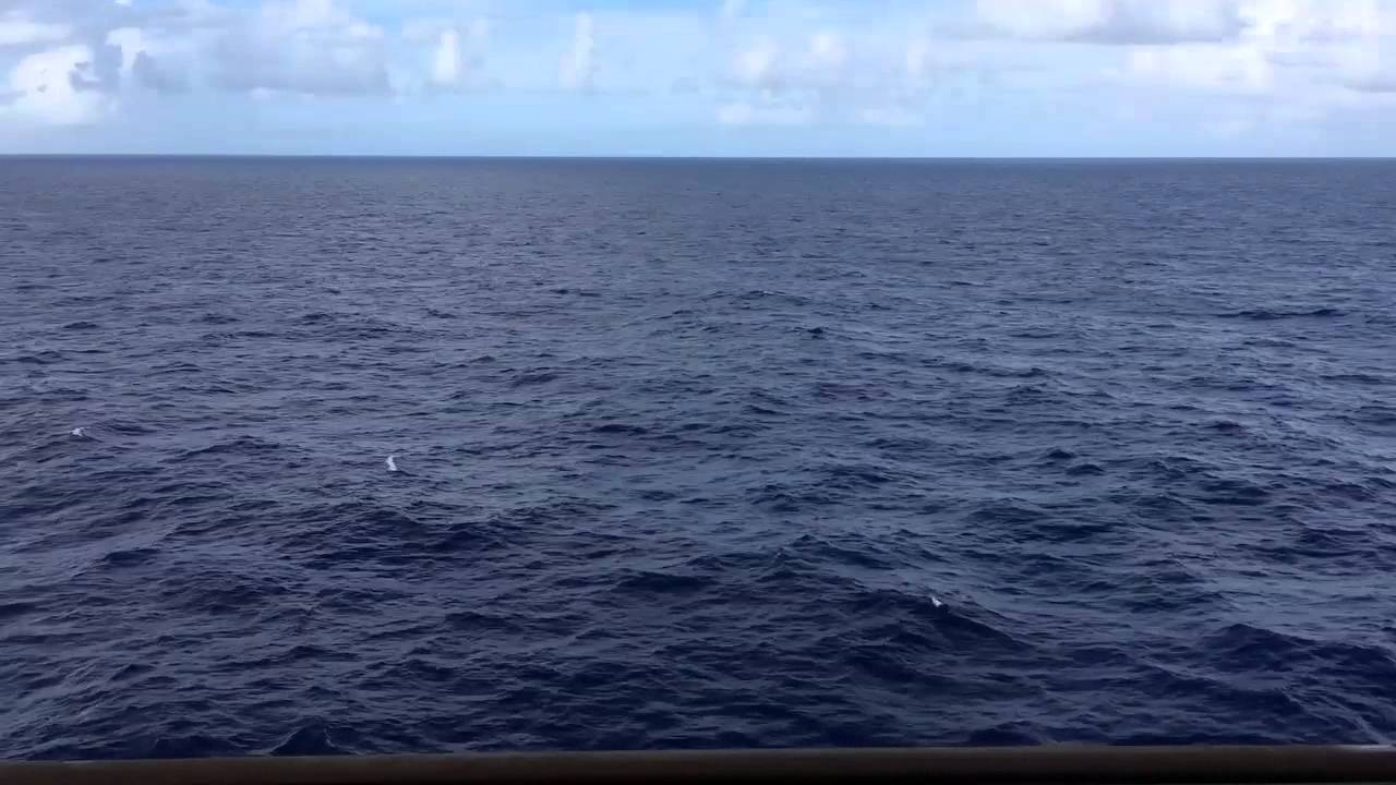 Views Of The Ocean ocean view - 1 full hour hd - cruise ship balcony - youtube