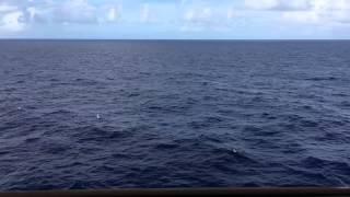 Ocean View - 1 Full Hour HD - Cruise Ship Balcony