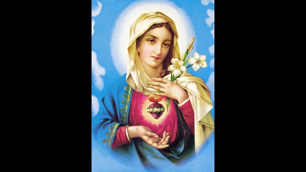 2 dia A Apresentação de Jesus no templo Novena ao Doloroso e Imaculado Coração de Maria