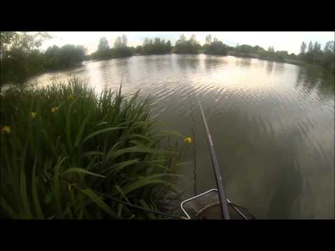 Pole Fishing- White Horse Country Park Lake
