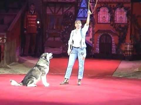 Rosi Hochegger Dancing Dogs