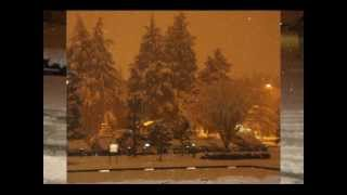 WINTER WONDER LAND, JP., FEB 14, 2011.wmv