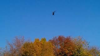 Align 500, обучение полетов на вертолете.
