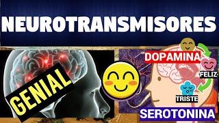 Los Neurotransmisores |Clasificacion y Función|