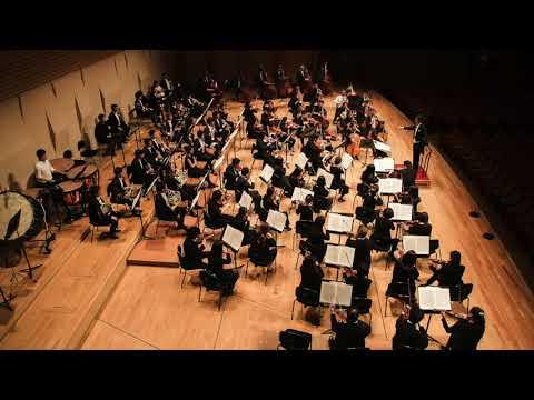 Symphony No. 5 - Beethoven