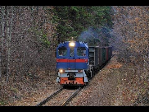 ТГМ6А-1108 с грузовым поездом. Жуковское ППЖТ