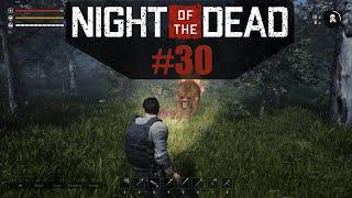 Der Bär war mal stärker oder? - Night of the Dead [DE] #30