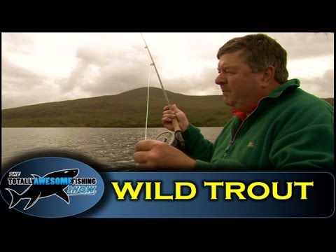 Fly Fishing Tips For Wild Brown Trout - The Totally Awesome Fishing Show