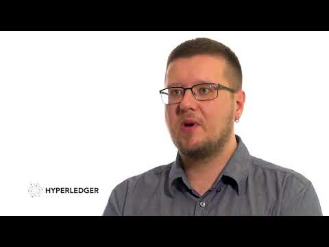 Alex Migitko of GameCredits on Hyperledger