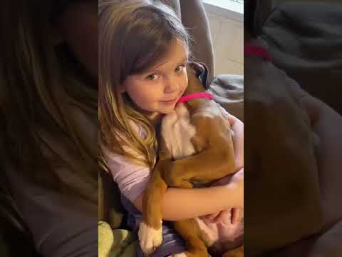 Little Girl Sings Lullaby To Puppy