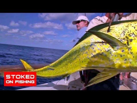 Intrepid Long Range Sportfishing  | Part 2