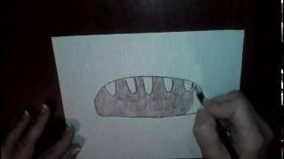 Рисуем хлеб - Draw bread - 画面包