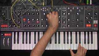 Moog Matriarch Dark: ambient jam from our first MASTER CLASS / MOOG