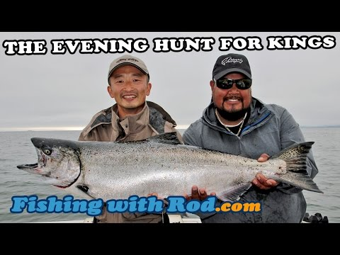 THE EVENING HUNT FOR KYUQUOT  SOUND KING SALMON | Fishing With Rod