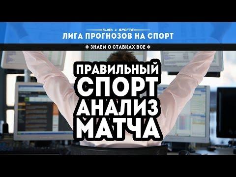 Видео Ставки онлайн фаворит спорт букмекерская контора aboard