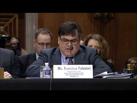 Principal Deputy Assistant Secretary Palmieri Testifies on U.S. Diplomats in Cuba