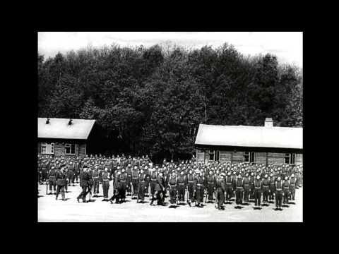 Canadian Army Newsreel No. 8