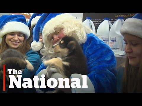 Thumbnail: WestJet Christmas Miracles Campaign | Emotional Ads