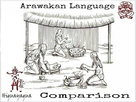 Taino Language Comparison: Behike