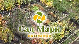 видео Местоположение и почвенно-климатические условия