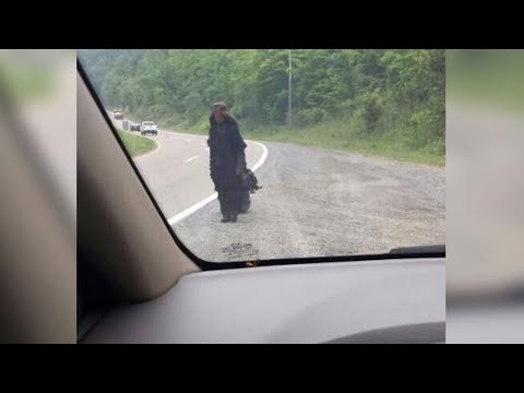5 Times People Have Spotted Creepy Things On Dashcam!